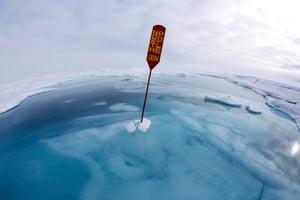 North Pole Underwater by Sue Flood