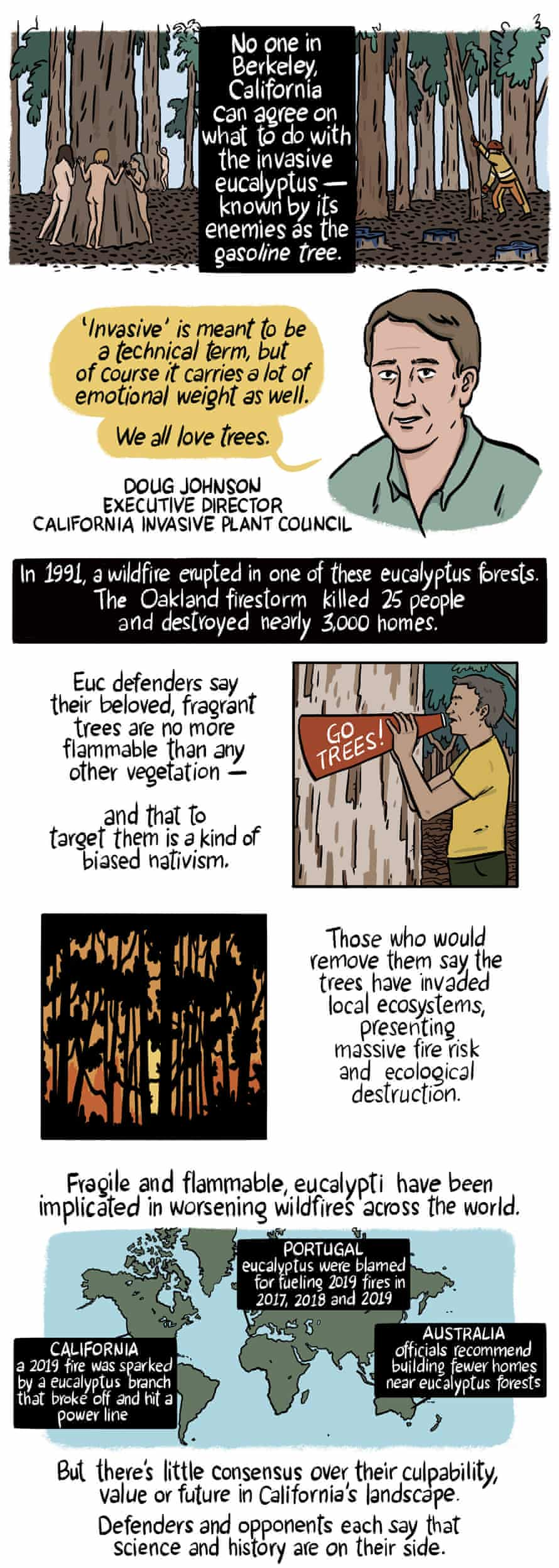 No one in Berkeley, California can agree on what to do with the invasive eucalyptus.