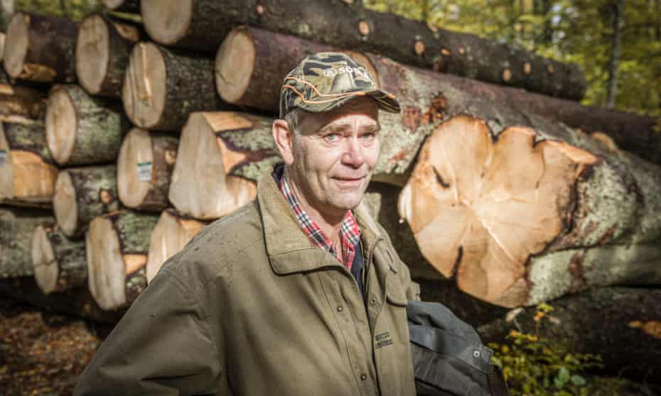 Lars-Erik Levin says he only fells trees with trunks he cannot reach around.