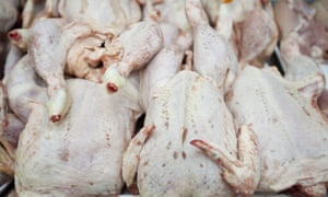 'It is important to handle chicken hygienically and cook thoroughly to reduce the risk to public health,' said the FSA.