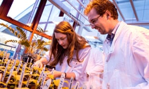 University of Derby BSc (Hons) Biology students working in the greenhouse.