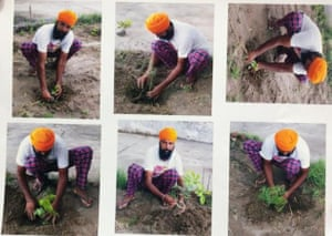 Tree-planting photos sent by Punjab residents to officials in order to quality for a gun licence.