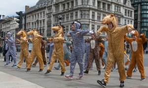 A group of young professional dancers in animal costumes perform outside of the British parliament ahead of a climate change rally in London on Wednesday.