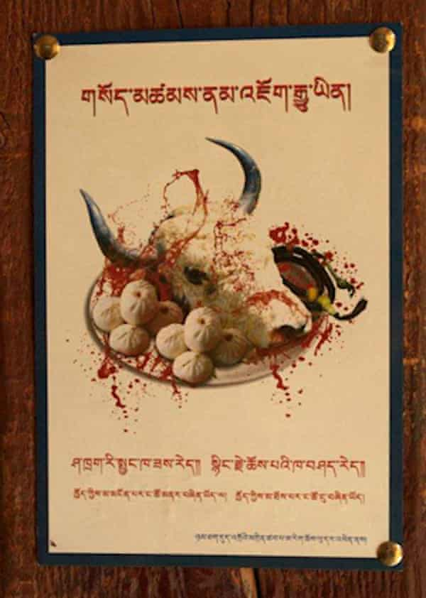 A flyer promoting vegetarianism near Samye in Tibet.