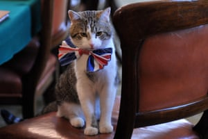 Larry wearing a British Union Jack bow tie ahead of the Downing Street street party.