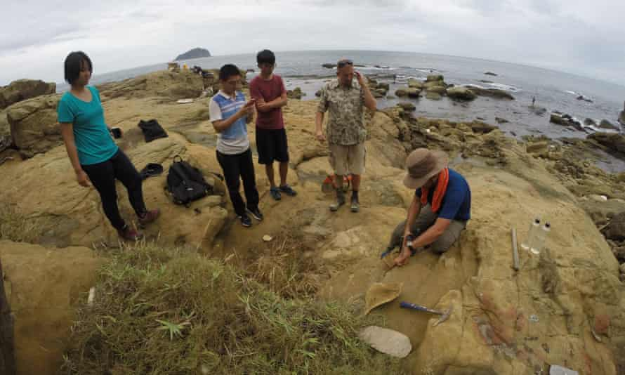 Researchers examine one of the burrows