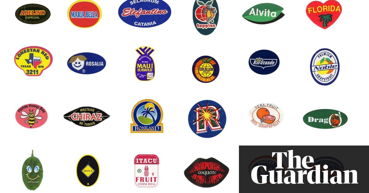 Rodney Davis steals bumper sticker design