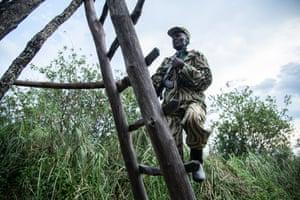 Wildlife police officer David Mubiana climbs a viewing platform.