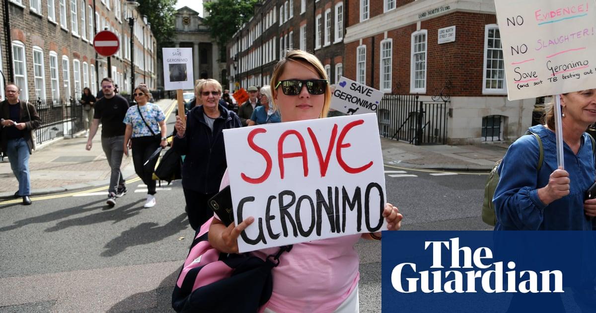 Campaigners march through London in bid to save alpaca Geronimo