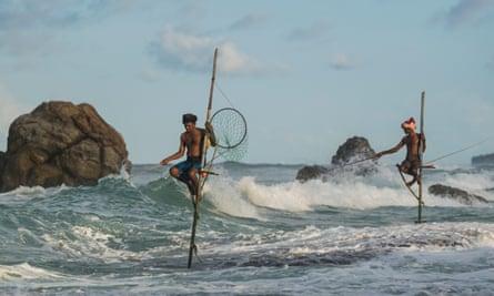 Sticking it out: stilt fishermen on the beach at Galle, Sri Lanka.