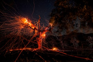 A long-exposure image shows a tree burning during wildfires in California, US