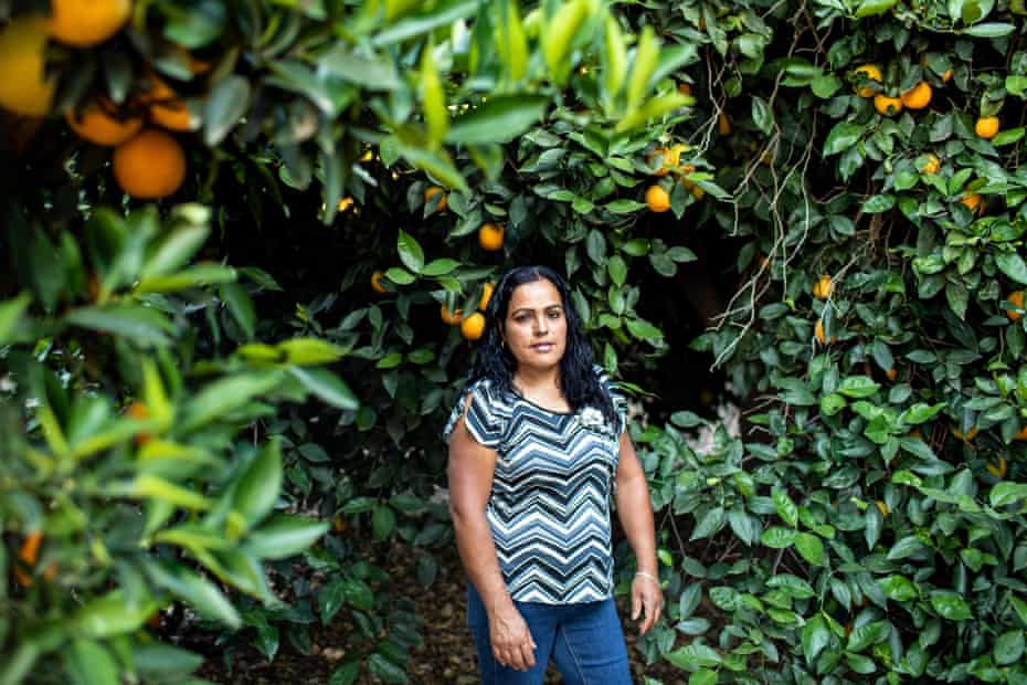 Fidelia Morales is a mother of five who lives in Lindsay, California, near citrus groves where chlorpyrifos use is common.