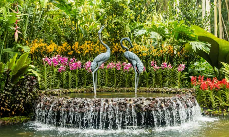 Elegant sculpture of cranes in a cascading fountain surrounded by beautiful orchids in the Orchid Garden, Singapore Botanic Gardens