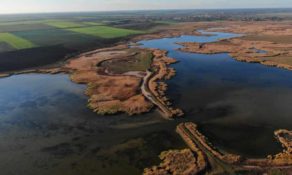 Water returns to the dried-up wetlands after a dam is removed in the Danube Delta Biosphere Reserve.