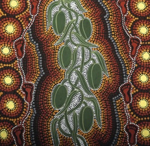 The footprints on either side of the plant represent the spiritual journey known as walkabout,in which Aboriginal people visit places where they feel a strong connection to the land. The dot-painted background uses traditional browns and yellows to symbolize the soil and the sun, respectively, in one of a series of paintings Ryder calls 'Bush Tucker Dreamings'. The twining stemsof the bush banana – named Marsdenia australis after the East India Company official William Marsden – contain an edible milky sap, while its greenish-yellow flowers are sucked for nectar. The large, avocado-like fruit are packed with yellow-brown seeds that taste similar to fresh peas. The fruit are eaten raw, or cooked in the hot ash around a fire. Flowers and fruit are collected soon after rainfall, before they deteriorate in the heat of the southern hemisphere summer.