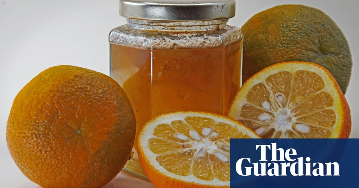 Flora Rider, 9, becomes youngest winner of world marmalade award