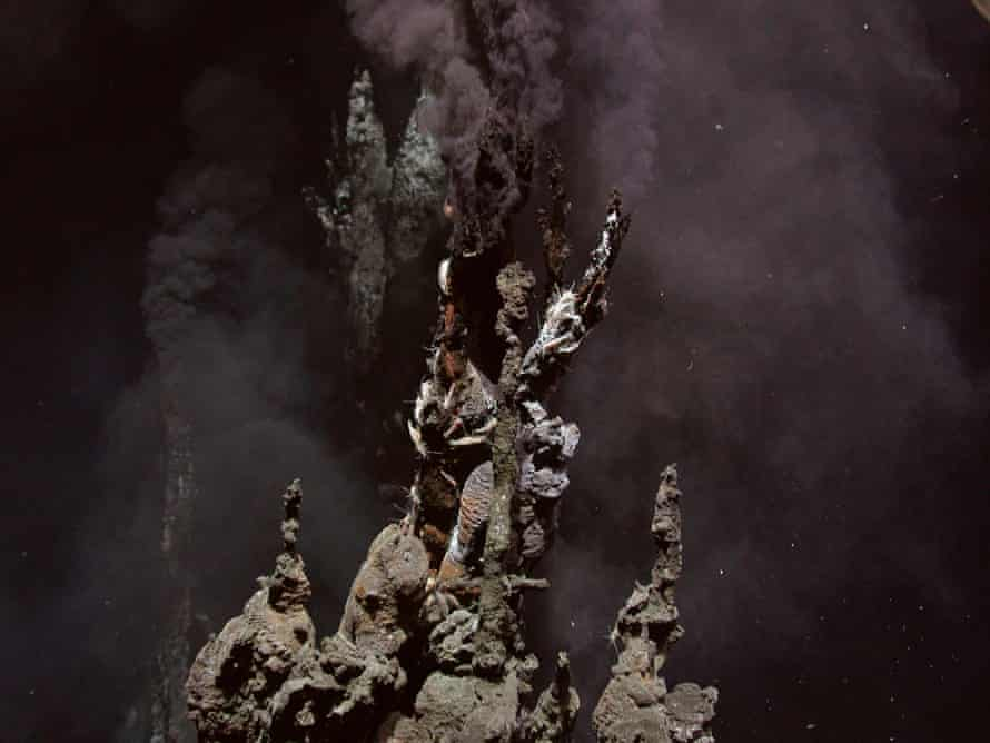 Hydrothermal vents in the Lau Basin in the Pacific Ocean