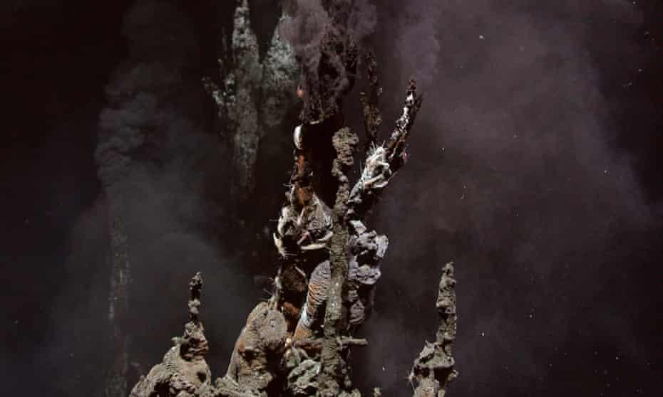 Hydrothermal vents in the Lau Basin, near Fiji.