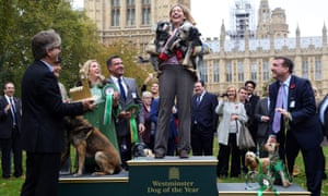 Andrea Jenkyns MP clutching her dogs Lady and Godiva