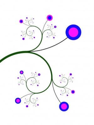 Fibonacci Florescentia by David A. Reiman