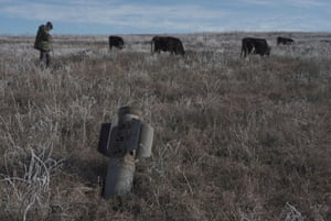 A man and some cows in a field, with a piece of metal in the foreground