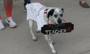 Support for the striking Oklahoma teachers comes in all shapes and sizes.