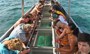 Tourists look through a glass-bottomed boat at sea life on the Great Barrier Reef