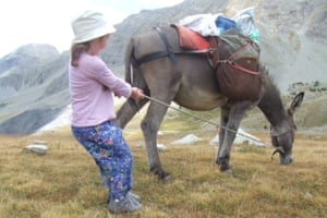 'Good family holidays allow children to entertain themselves.' Here Maddy has fun with a donkey in the Alps.