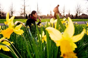 Mellow yellow: a woman eats a post-work ice-cream while enjoying the sunshine and daffodils on the last day of winter. Tuesday is the vernal equinox, the first day of spring.