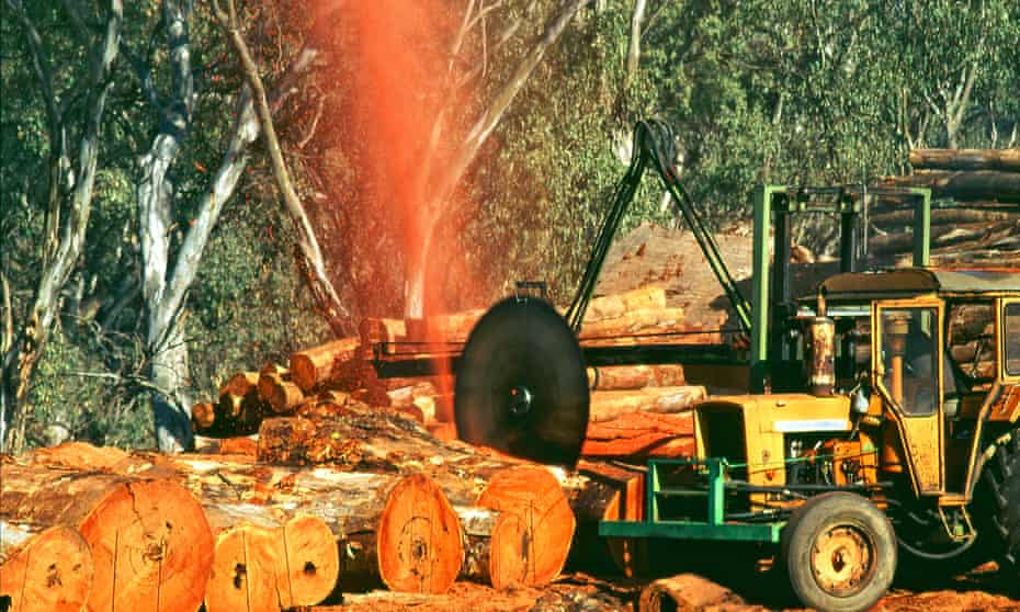 Logs being milled