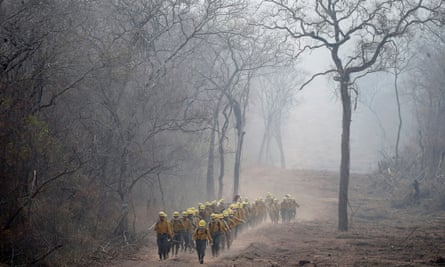 Firefighters from Bolivia's army patrol an area where wildfires have destroyed hectares of forest. More than 4m hectares in the Santa Cruz department have been ravaged by the fires.