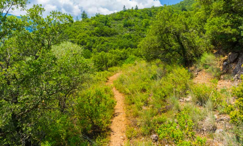 A walking path in Mount Oiti national park, Greece.