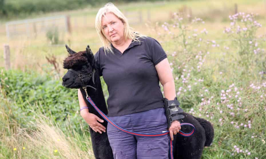 Helen MacDonald with Geronimo, her alpaca, which faces being put down today after a lengthy legal battle with Defra.