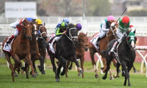 Banning the use of whips is one way welfare groups say racing could be improved ahead of the Melbourne Cup