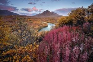 Winner, Breathing Spaces categoryTombstone Territorial Park, Yukon Territory, Canada
