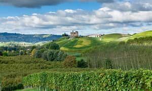 Chianti vineyards.