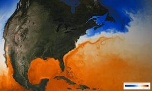 The Gulf Stream seen through sea surface temperature.