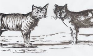 One of artist Penny McCarthy's illustrations for the book Beware the Cat, which has been turned into a stage show.