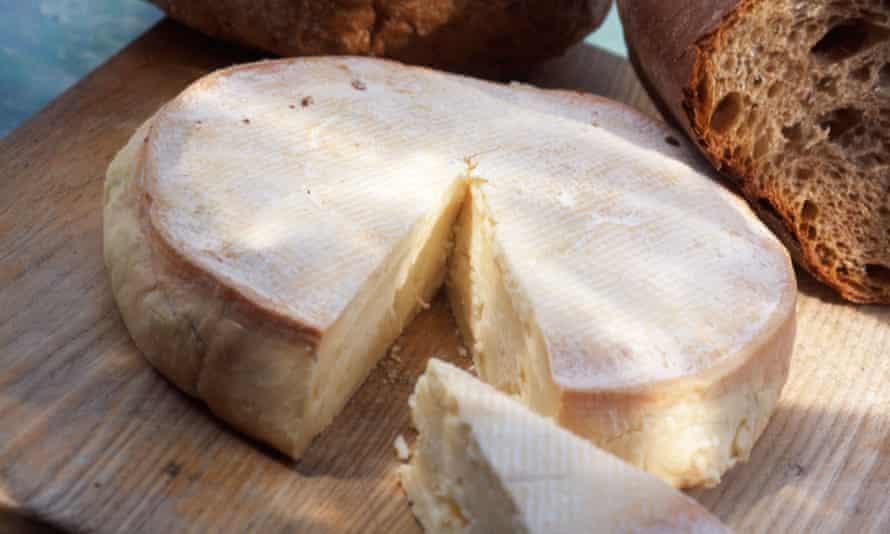 Abbaye de Citeaux cheese