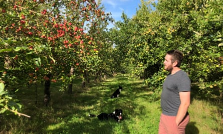Albert Johnson with his dogs, Norman and Summer, at the Ross-on-Wye Cider and Perry Company.