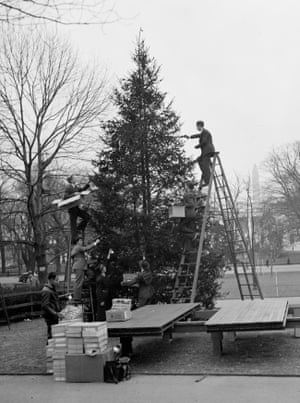 1937 - Workers decorate the nation's community Christmas tree just north of the White House in preparation of its lighting by President Roosevelt.