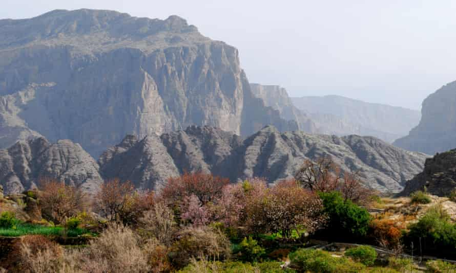 Jebel Akhdar, a mountain range in the north of the gulf state of Oman.