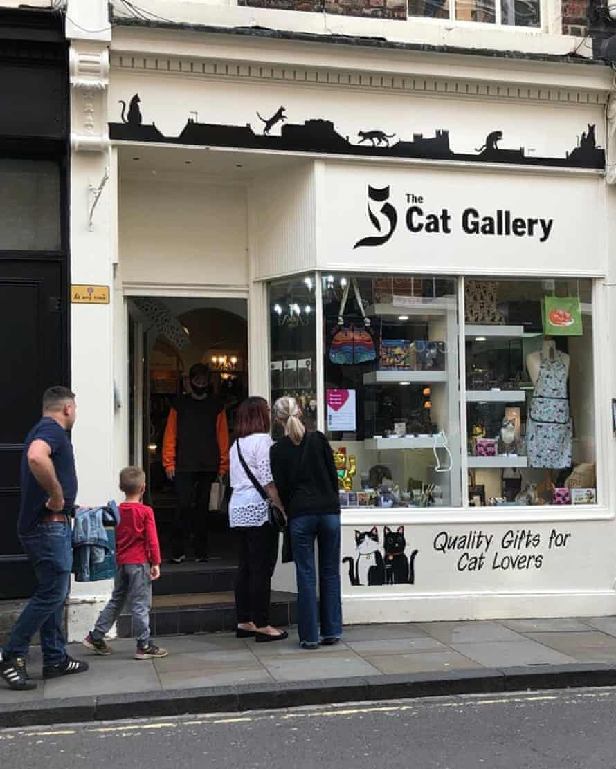 'Sells toys and bowls, feeding mats, collars and calming sprays': The Cat Gallery, York.