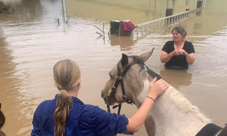 13 year old Ella Saul has braved the floodwaters on horse back to help save her family's cows. 85 of Gavin Saul's cattle were swept away in Kempsey, NSW.