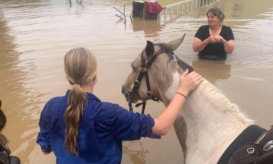 Ella Saul, 13, braved the floodwaters on horseback in a bid to rescue the family's cows