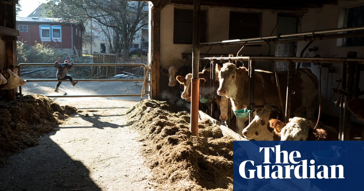 Fewer, bigger, more intensive: EU vows to stem drastic loss of small farms