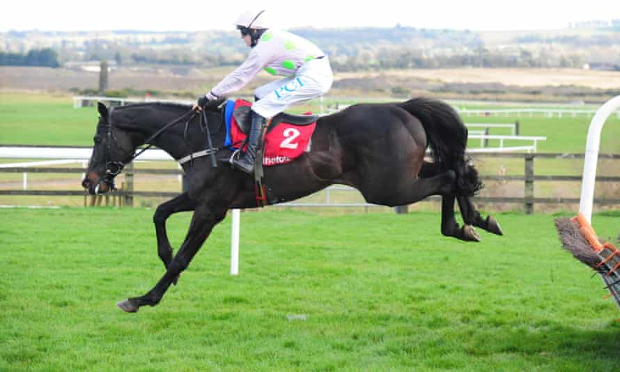 Burrows Saint, winner of the 2019 Irish Grand National, is tipped for a strong finish.