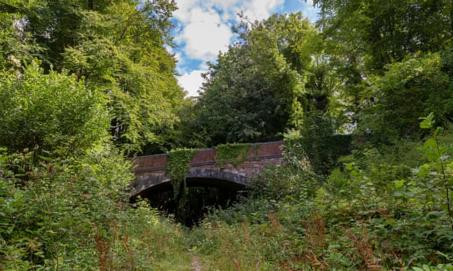 Bridge over the former Meon Valley Railway, dismantled in the 1950s and now a heritage trail.