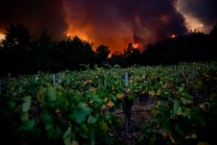 The Glass Fire burns behind Merus Wines vineyards in Napa Valley.