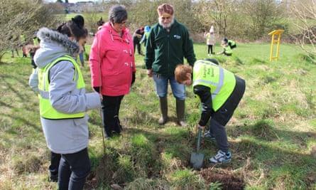 Million Tree Project planting